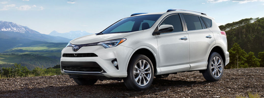 2017 toyota rav4 platinum trim level features and specs. Black Bedroom Furniture Sets. Home Design Ideas