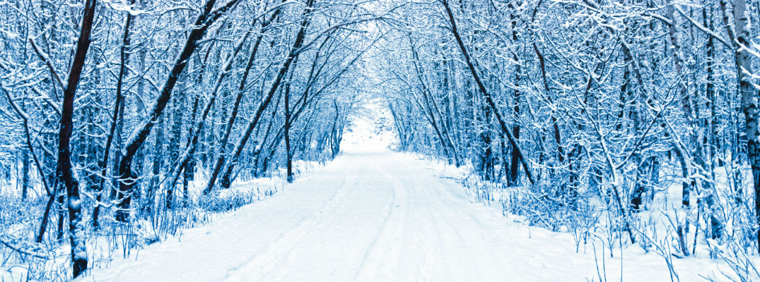 A stock photo of a snow-covered road cut through the woods
