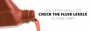 how often should you check the fluid levels in your car