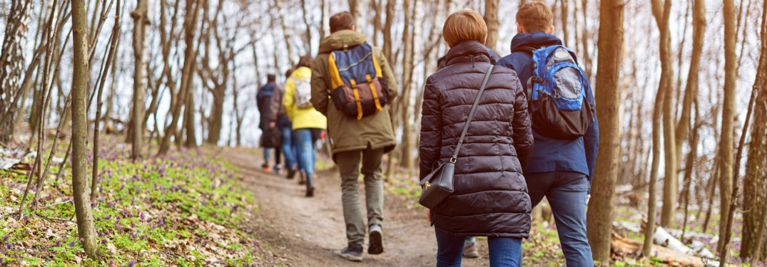 group of people hiking up hill in the woods