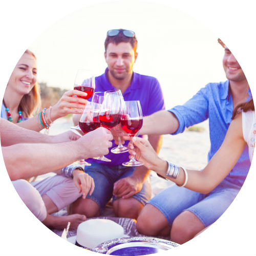 friends sitting in a circle and toasting with wine