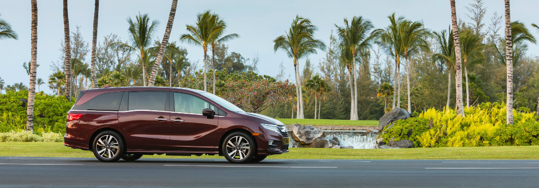 dark red honda odyssey parked by palm trees