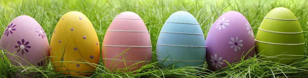 Colorful Easter eggs lined up next to each other in green grass