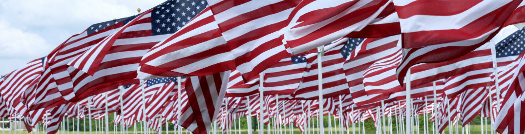 A field full of American flags blowing in the wind