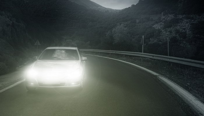 A car on a dark forest road at night