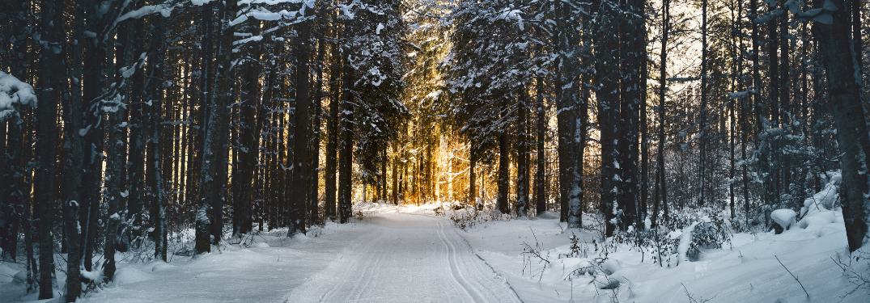 Best Practices for Effective Winter Car Care & Maintenance