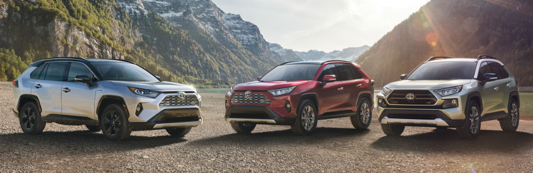 All New 2019 Toyota Rav4 Crossover Photo Gallery