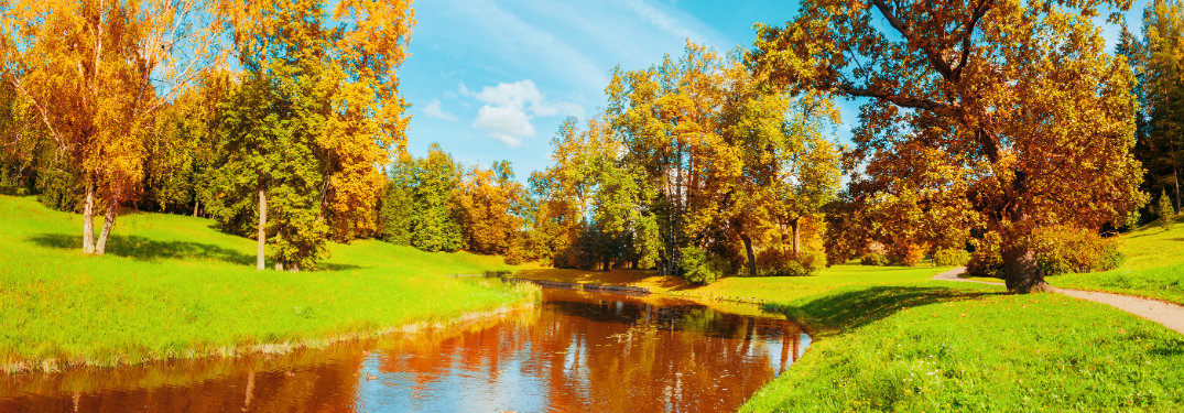 picturesque scene of fall day, river, trees