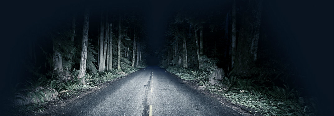Night-driving-through-forest