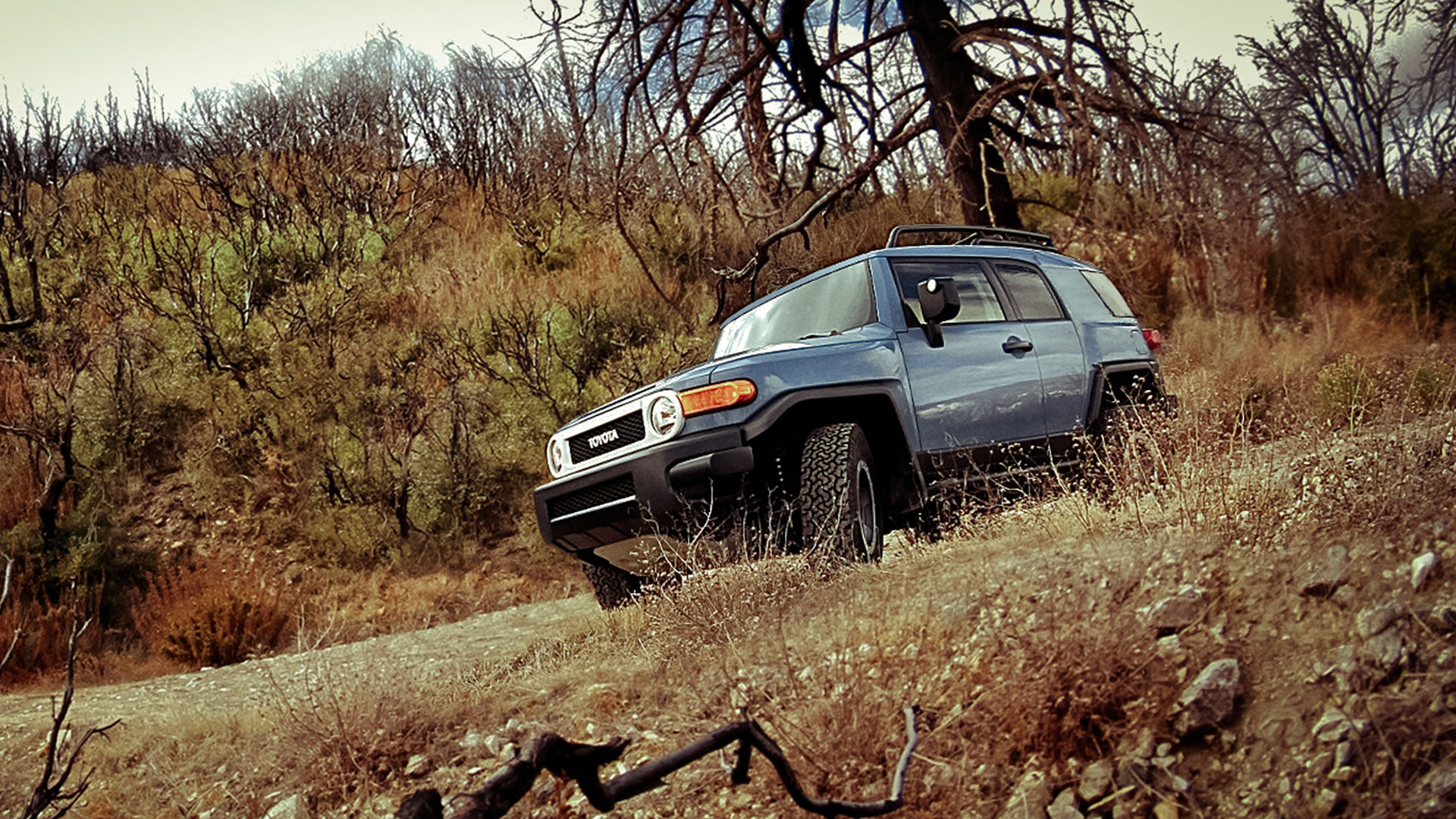 2014 Toyota Fj Cruiser Camping Accessories Fuel Filter Location