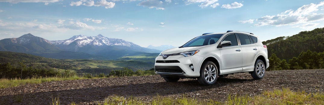 what are the 2017 toyota rav4 specs features. Black Bedroom Furniture Sets. Home Design Ideas