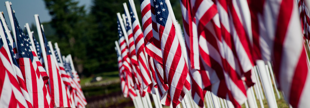 rows of smaller american flags planted in grass