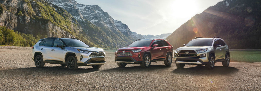 Three 2019 Toyota RAV4 models parked next to each other