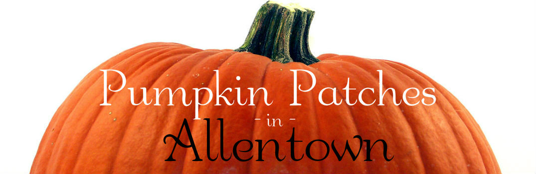 Pumpkin patches near Allentown PA