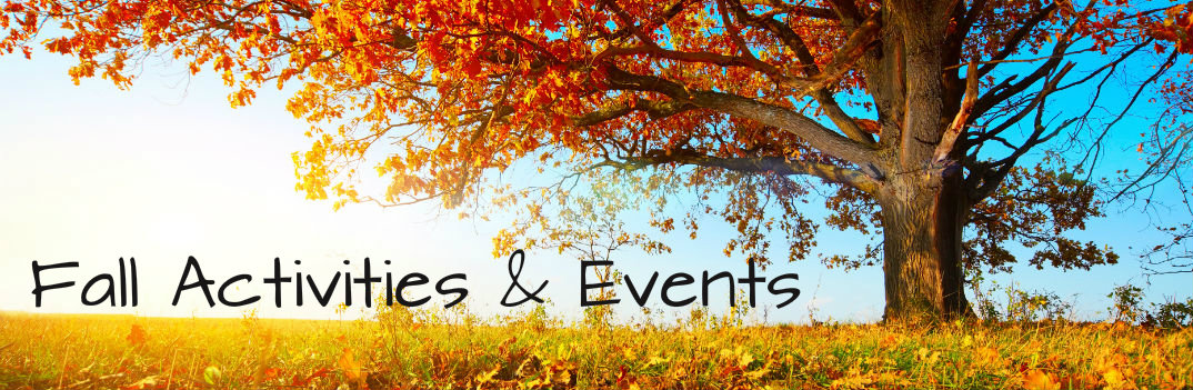 fall activities and events autumn colors tree leaves