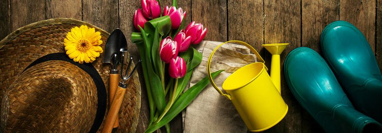 Best Garden Centers and Nurseries Torrance CA