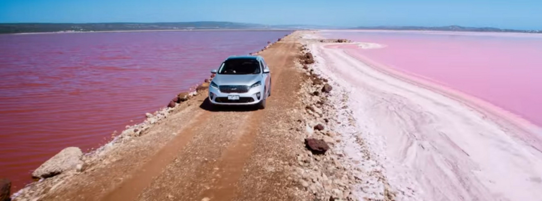 2019 Kia Sorento surrounded by colorful water