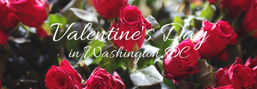 Best Restaurants for Valentine's Day 2019 in Washington DC