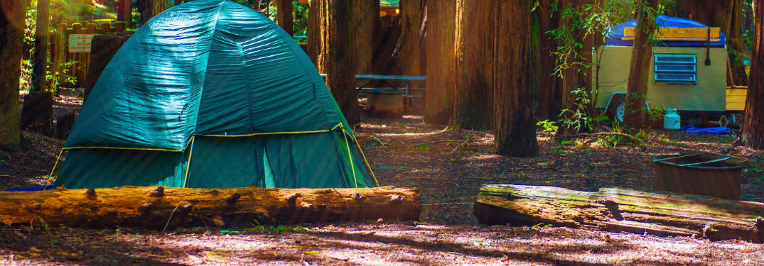 Which Toyota Models are Best For Summer Camping Trips