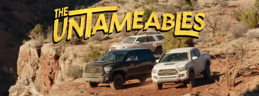 Screenshot from the Toyota Untameables Commercial