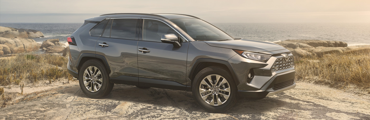 silver 2019 toyota rav4 on mountain