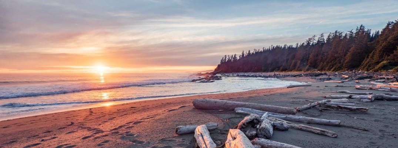 A stock photo of a beach at dawn.