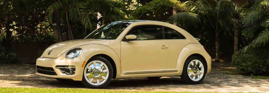 2019 Volkswagen Beetle Final Edition parked in front of a row of trees