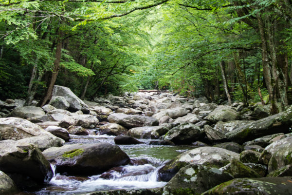 Hasil gambar untuk Great Smoky Mountains 600 x 400
