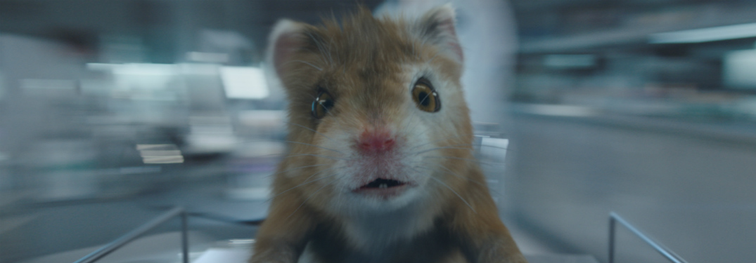 what song is playing in the kia soul turbo hamster commercial
