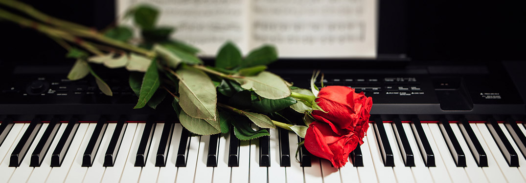 red rose laid across piano keys