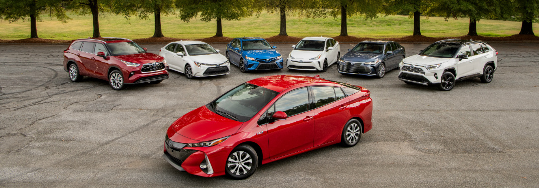 2020 Toyota Hybrid vehicle lineup parked in front of trees