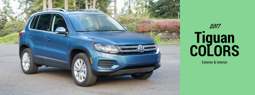 2017 Volkswagen Tiguan Interior and Exterior Colors