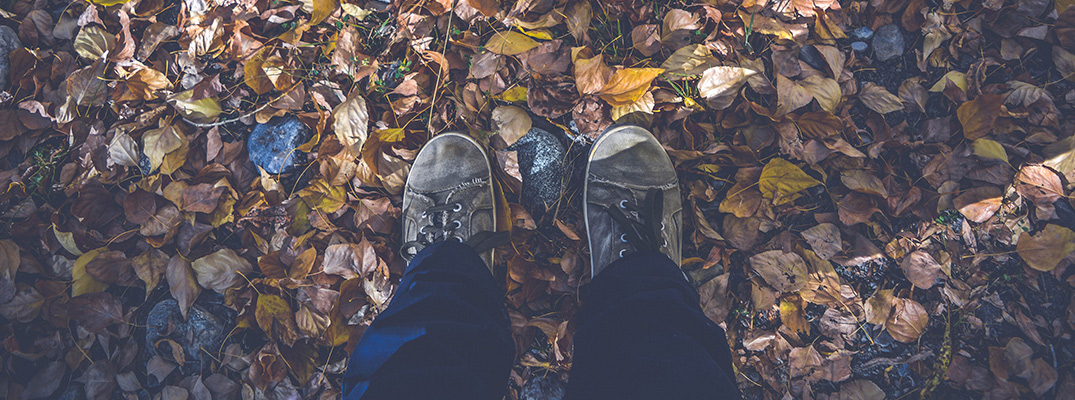 shoes standing in autumn leaves