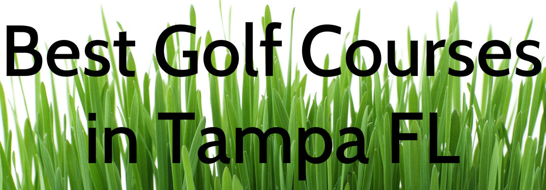 Where's the Best Place to Golf in Tampa FL_b
