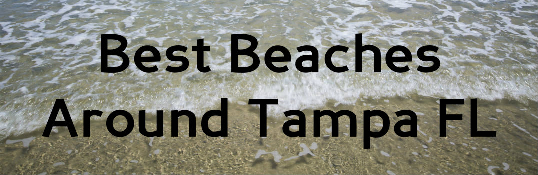 Best Beaches Around Tampa FL_b