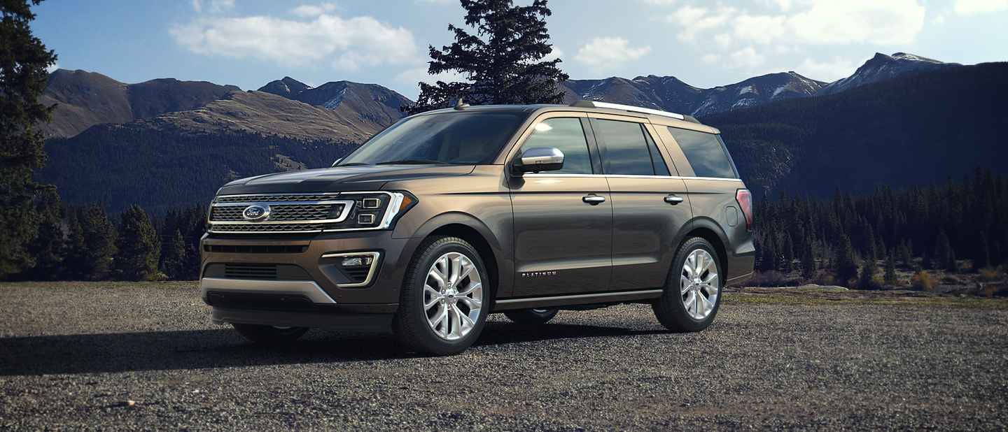 2018 Ford Expedition Stone Gray Exterior Color
