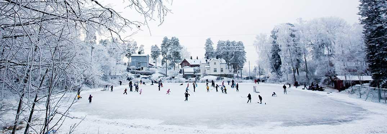 Ice skating rinks around tampa fl solutioingenieria Images
