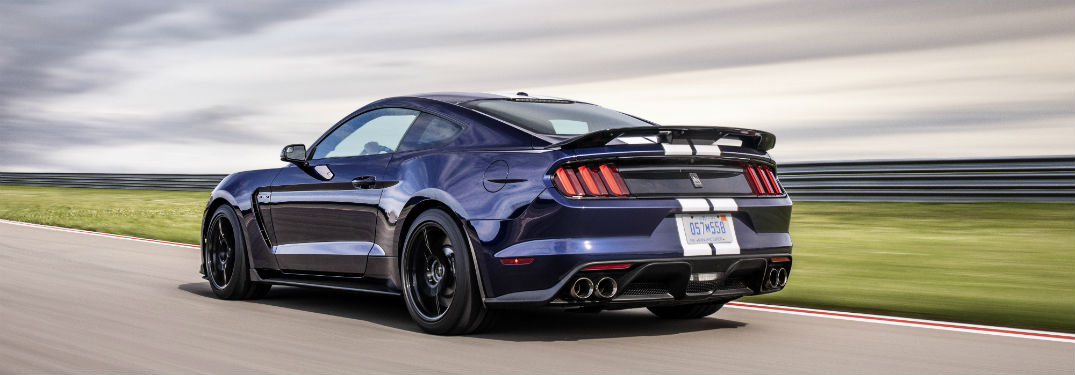 rear view of a purple 2019 Ford Mustang Shelby GT350