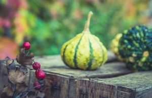 colorful gourds on a table