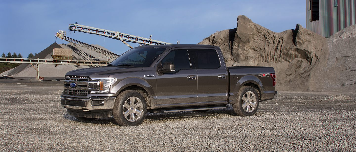 2019 Ford F-150 Stone Gray Exterior Color
