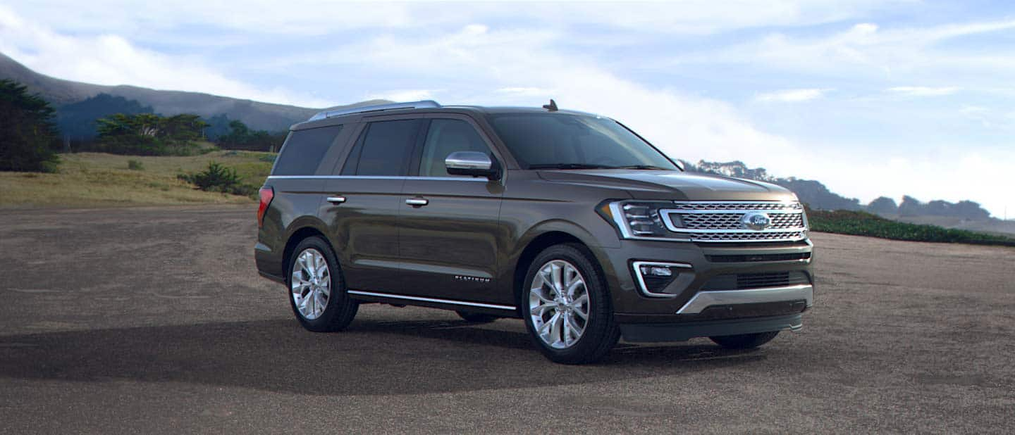 2019 Ford Expedition Stone Gray Exterior Color