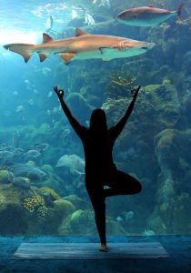 yoga pose in front of aquarium