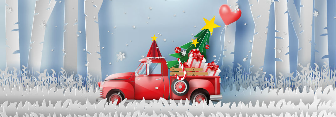 Brandon Ford in Tampa FL Shows You How to Use Your New Ford to Get Your Christmas Tree Home Safely