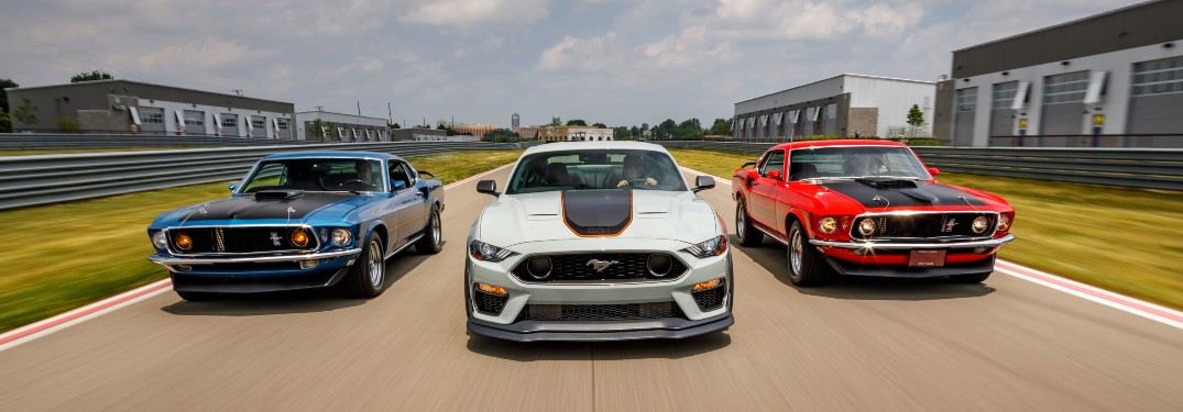 trio of Ford Mustang race cars