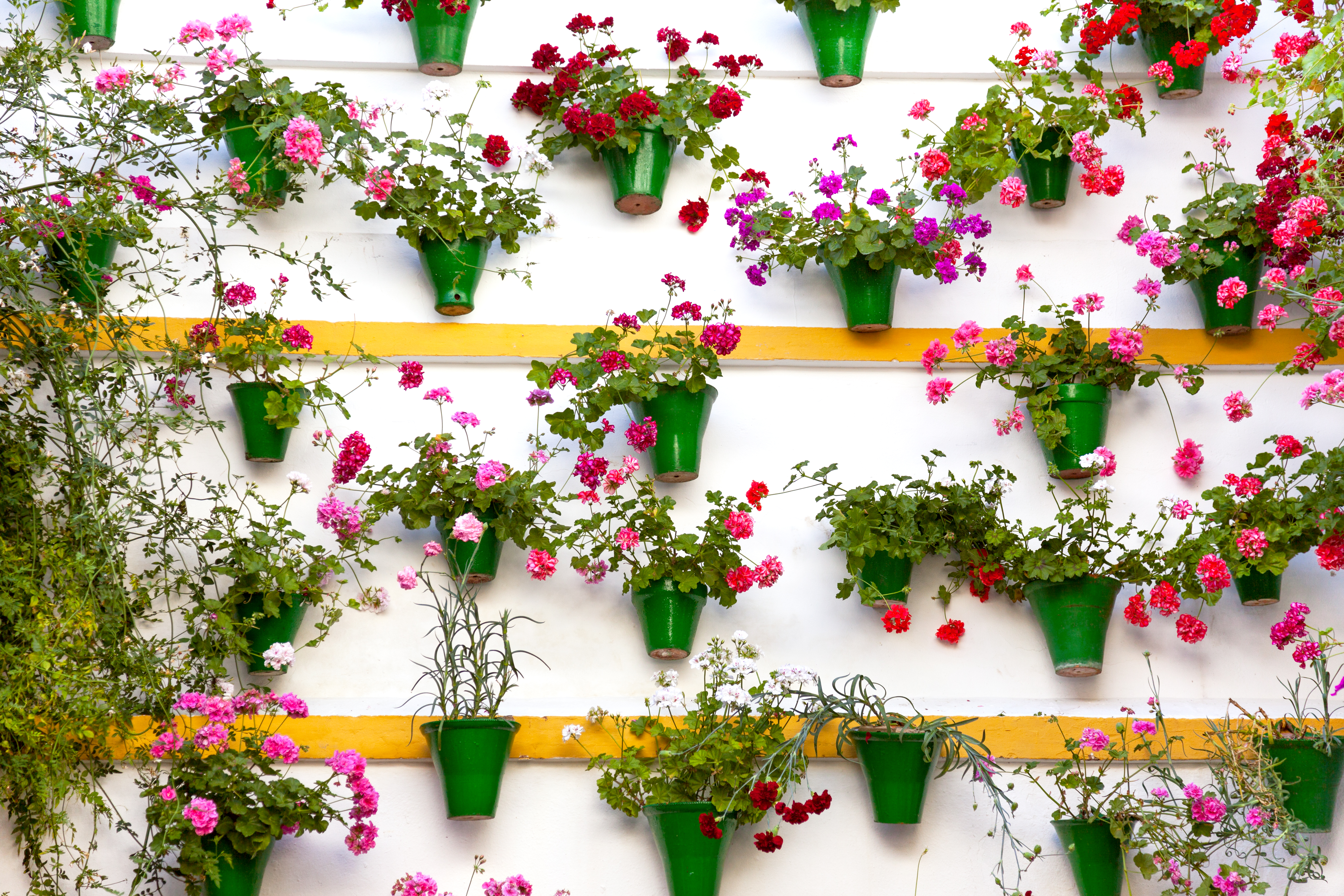 Hang with Me » Flower Decoration of the Wall – Old European Town