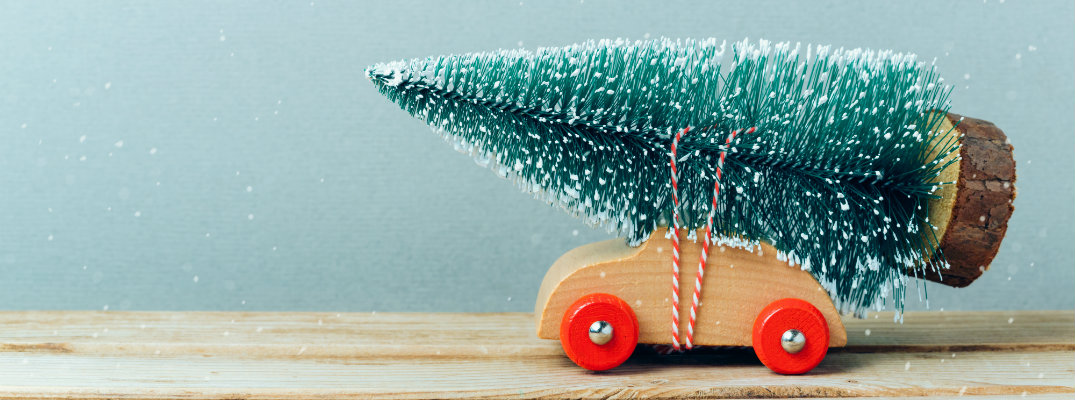 Check Out These Christmas Tree Transportation Trips For Your Family