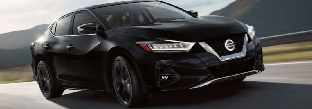 2019 Nissan Maxima driving on a road
