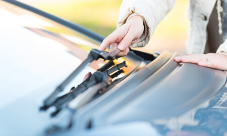 Woman holds windshield wipers