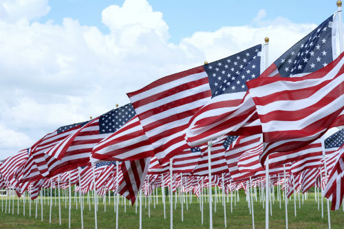 Bigstock Field Of Flags On Memorial Day 5261606 B