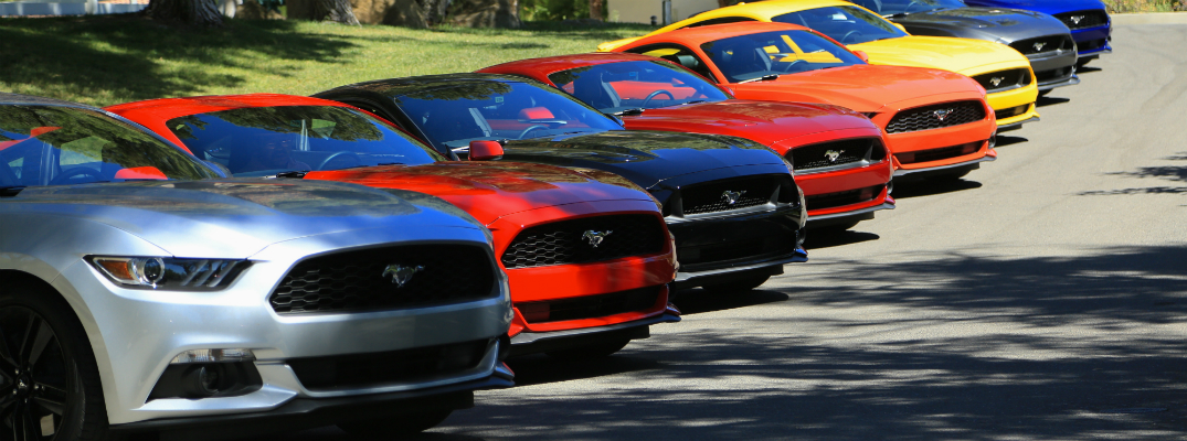Annual Mustang Rally Near Brainerd - Ford dealership houston